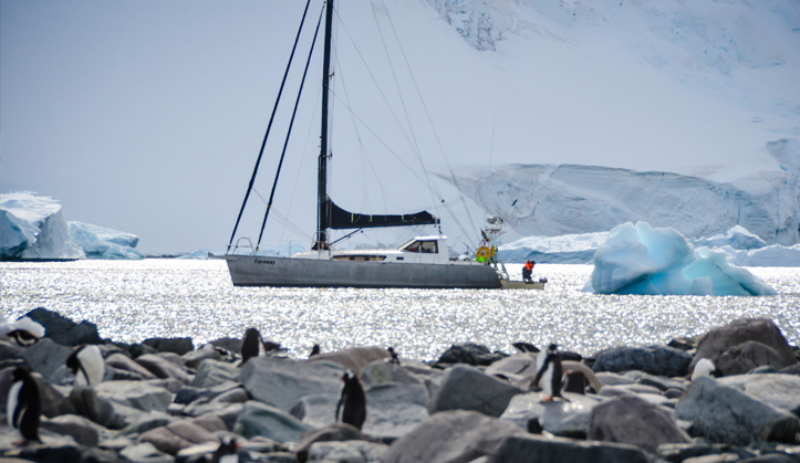 Faraway, designed by New Zealand based yacht designer Angelo Lavranos, did an ocean passage to Antarctica and back, and awarded by SA Sailing.